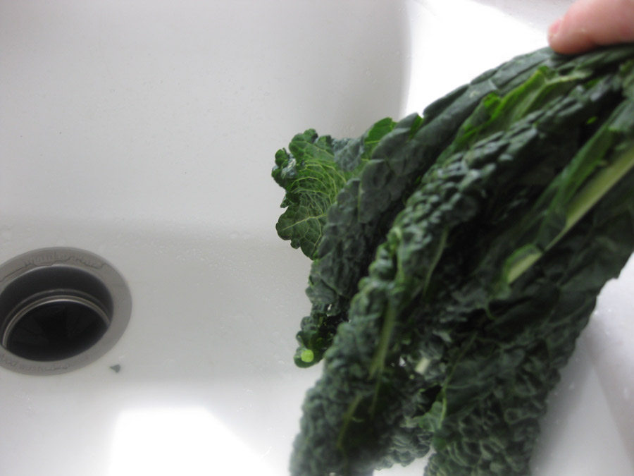 Release water from kale